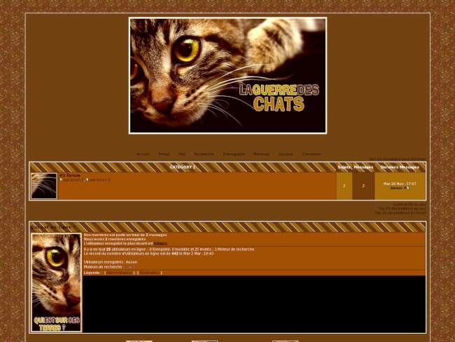 Guerre des chats