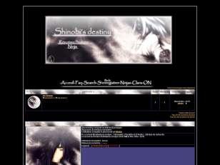 Shinobis destiny