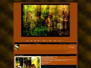 World forêt