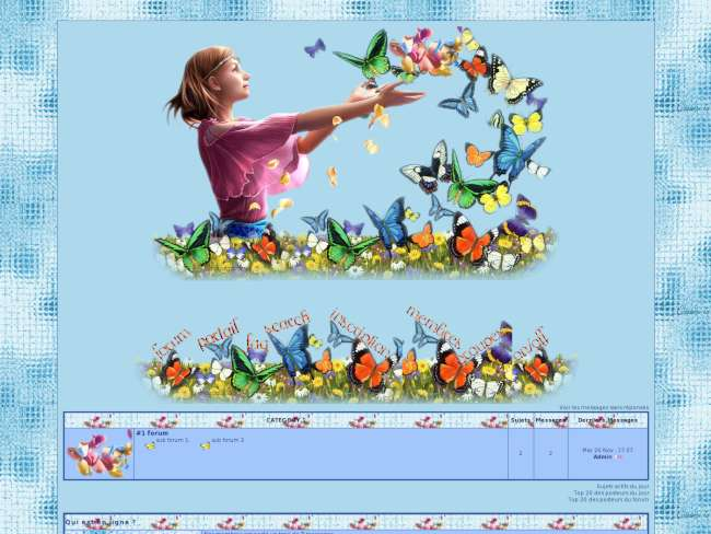 Envolée papillons