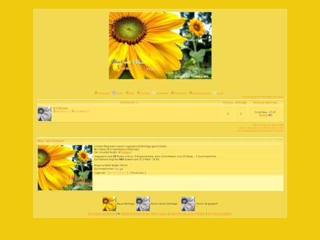 Summer of Flowers