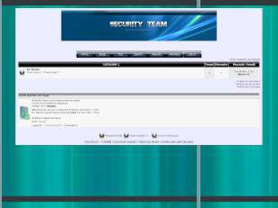 Security.team