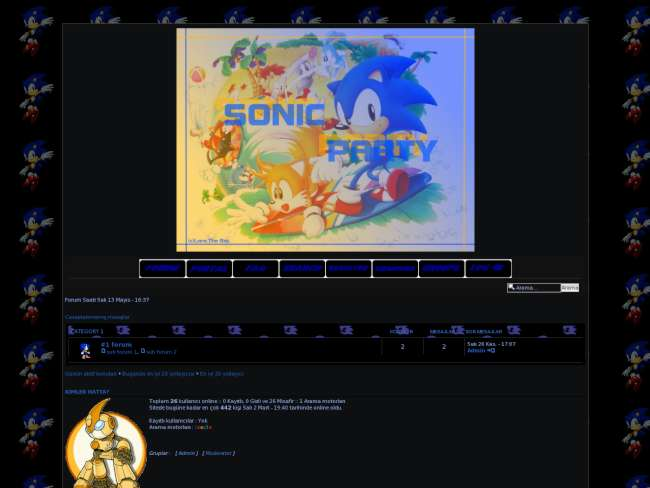 Sonic home party