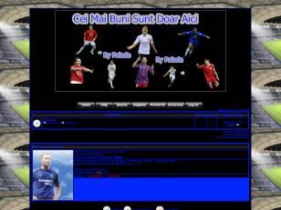 Fifa2008