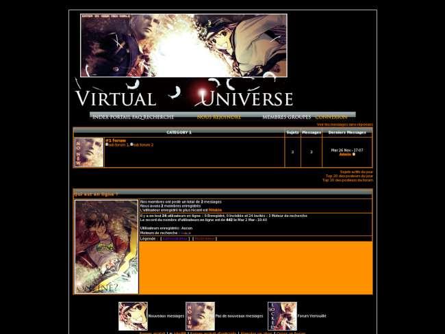 Virtual universe