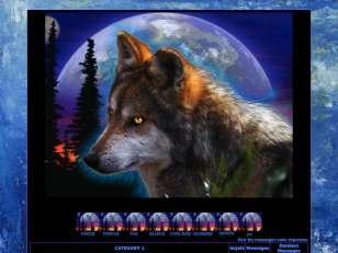 Nuit de loup