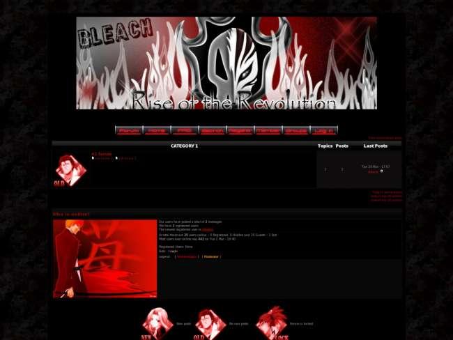 Bleach: revolution