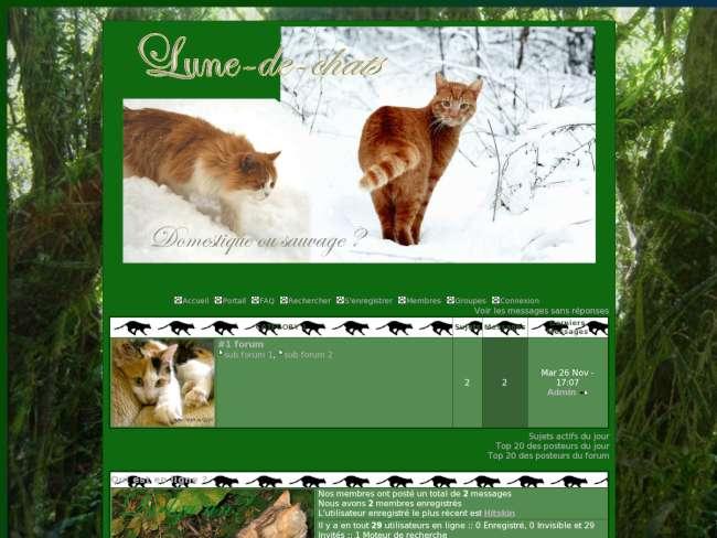 Lune-de-chats hiver 2010