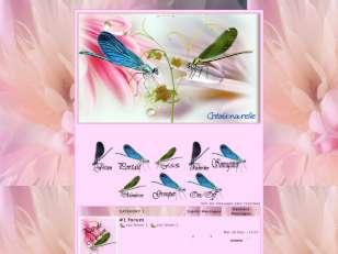 Libelulle et ces fleurs01