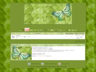 Nature et papillons