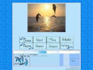 Mon petit dauphin bleu