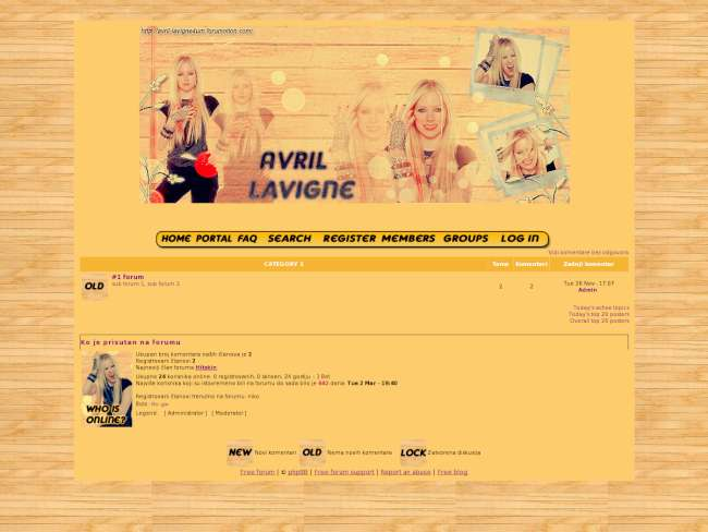 Avril Lavigne skin by: me