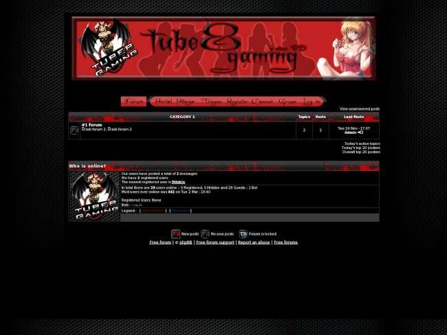 Tube8 gaming skin