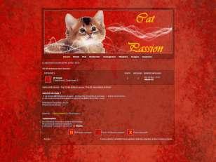 ~ cat passion ~