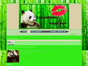 Bambou & cie