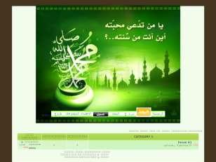 اسلام 2010netislamic