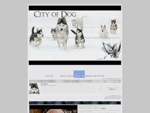 City of dog