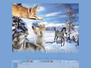 Libero free(perso)