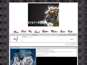 Серебрянные Тигры...