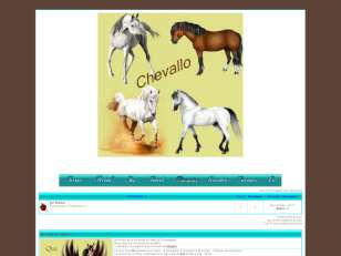 Cheval !!!!