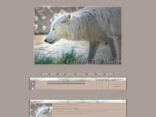 Loups beige - non libre !
