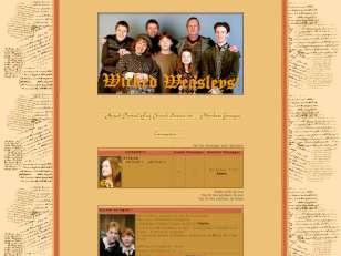 Wicked Weasleys