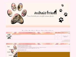 Animals friends +
