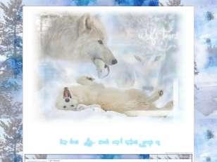 Wolf's tears