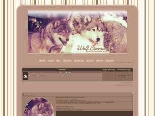Wolf Eternity