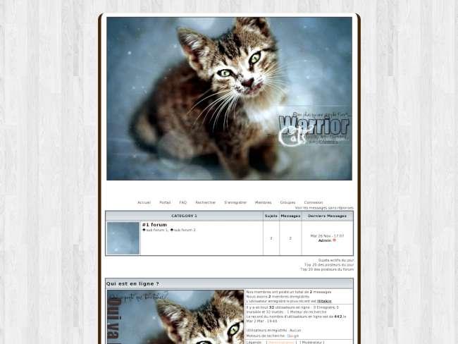 Warriors cats lgdc 2