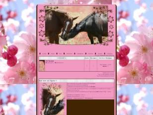 Thème chevaux printemps