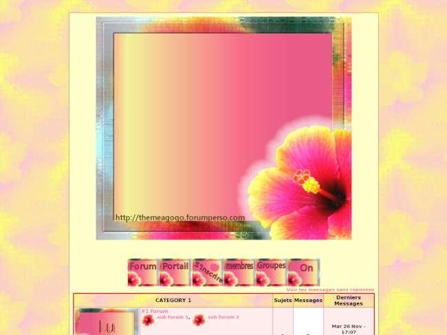Au pays des hibiscus