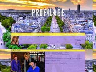 Profilage2