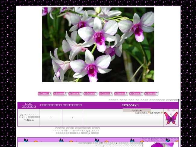 زهرة الأوركيدا