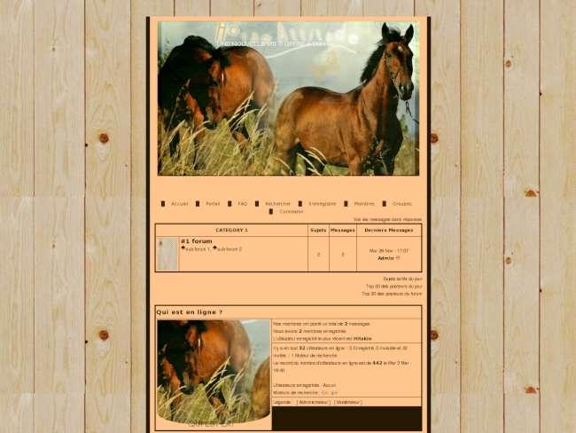 Thème #1 horse attitude