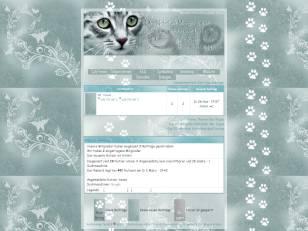 Catz-forum #2