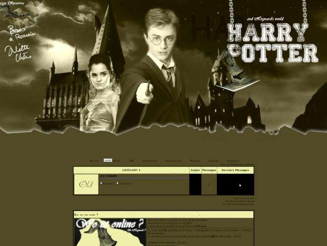 Hogwards World and HP