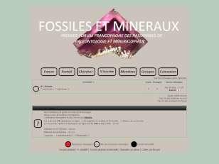 Fossiles et minéraux