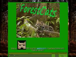 Forestcats