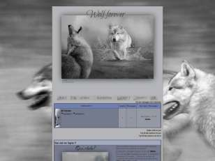 Wolf forever by farah