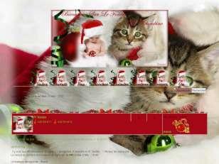 Regard d' enfant à Noël