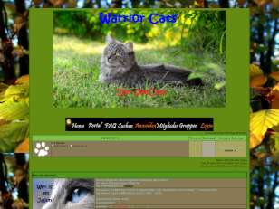 Warrior cats~ seeclan