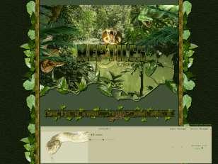 Reptiles & co