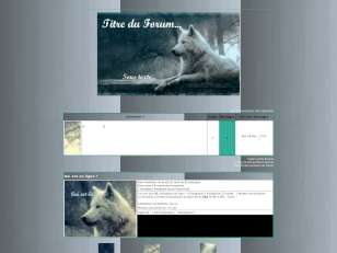 Themes loup gris