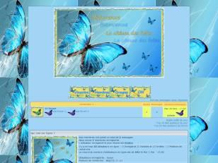 papillon ete