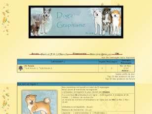 Dog'z graphisme