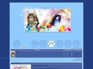 Oeil de chat v1