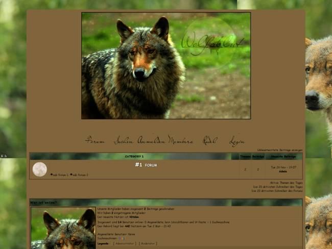 Wolfsblut;; braun
