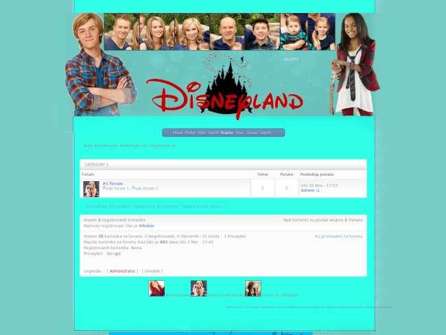 Disney land new year skin
