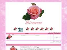 Rose de printemps